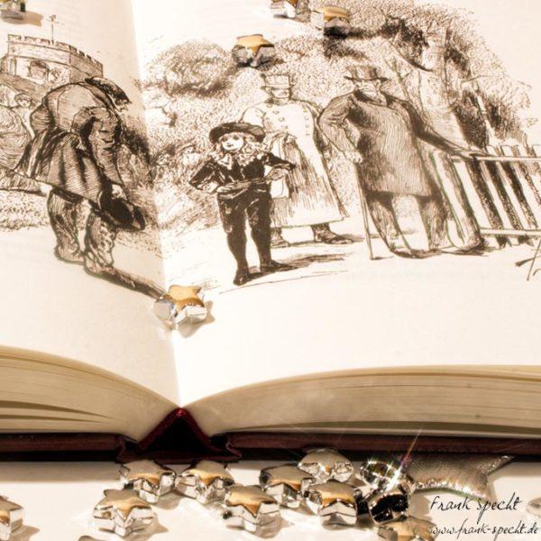Frances Burnett: Der kleine Lord als Buch
