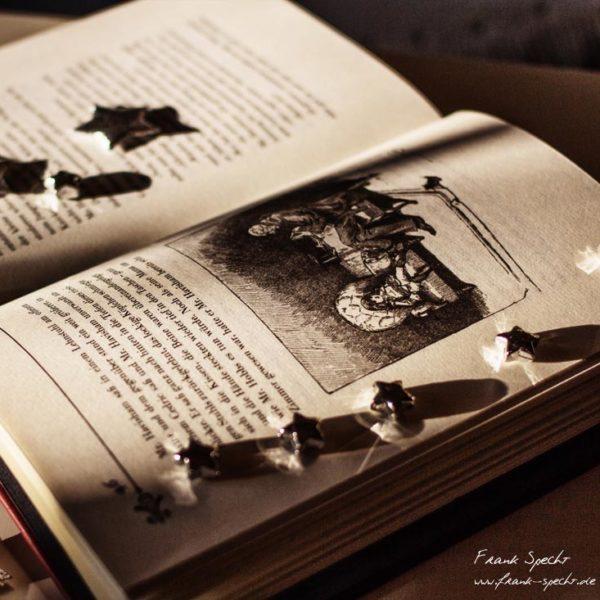 Der kleine Lord mit den Illustrationen der Erstausgabe