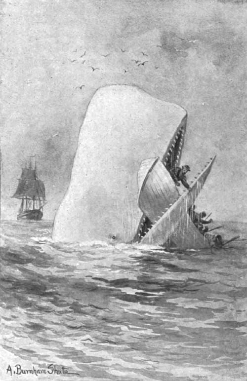 Moby Dick nach Augustus Burnham Shute